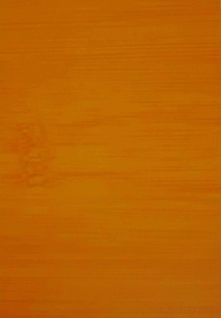 黃金竹.jpg