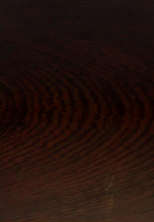 緬甸雞翅木.jpg