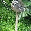 2009 9 10 宜蘭藏酒酒窖 (13)