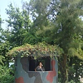 2010-7-30 卡蹓馬祖-第四站~補拍南竿 (43)
