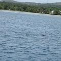 2011-1-20-關島@白色雙船身動力風帆「美人魚公主號」_015