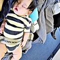 國泰航空的嬰兒掛籃 (33)
