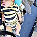 國泰航空的嬰兒掛籃 (35)