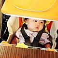 2012 9 22 礁溪甕窯雞 (12)