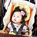 2012 9 22 礁溪甕窯雞 (13)