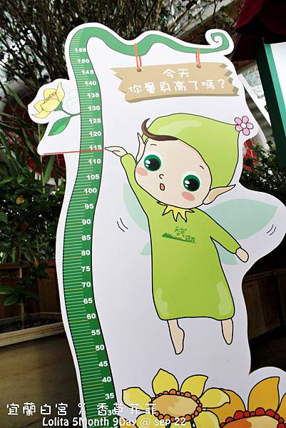 2012 9 22 香草菲菲 (11)