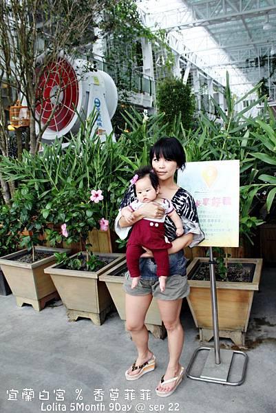 2012 9 22 香草菲菲 (15)