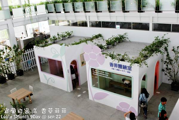2012 9 22 香草菲菲 (62)