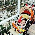 2012 9 22 香草菲菲 (110)
