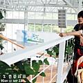 2012 9 22 香草菲菲 (135)