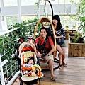 2012 9 22 香草菲菲 (144)