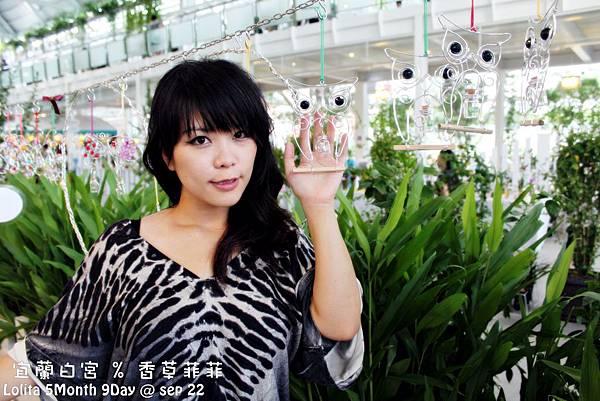 2012 9 22 香草菲菲 (189)
