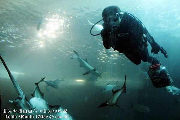 2012 9 30 澎湖水族館 (40)