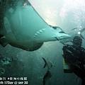 2012 9 30 澎湖水族館 (54)