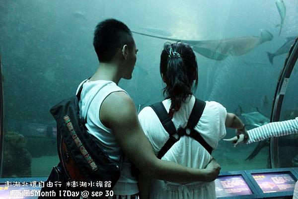 2012 9 30 澎湖水族館 (56)