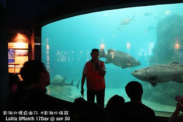 2012 9 30 澎湖水族館 (60)