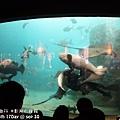 2012 9 30 澎湖水族館 (61)