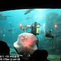 2012 9 30 澎湖水族館 (64)