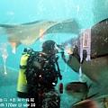 2012 9 30 澎湖水族館 (67)