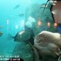 2012 9 30 澎湖水族館 (69)