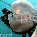 2012 9 30 澎湖水族館 (71)