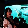 2012 9 30 澎湖水族館 (84)