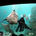2012 9 30 澎湖水族館 (88)
