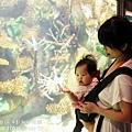 2012 9 30 澎湖水族館 (96)