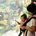 2012 9 30 澎湖水族館 (97)