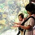 2012 9 30 澎湖水族館 (99)