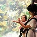 2012 9 30 澎湖水族館 (100)