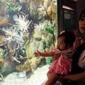 2012 9 30 澎湖水族館 (102)