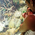 2012 9 30 澎湖水族館 (104)