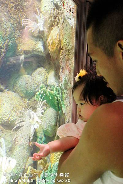 2012 9 30 澎湖水族館 (105)