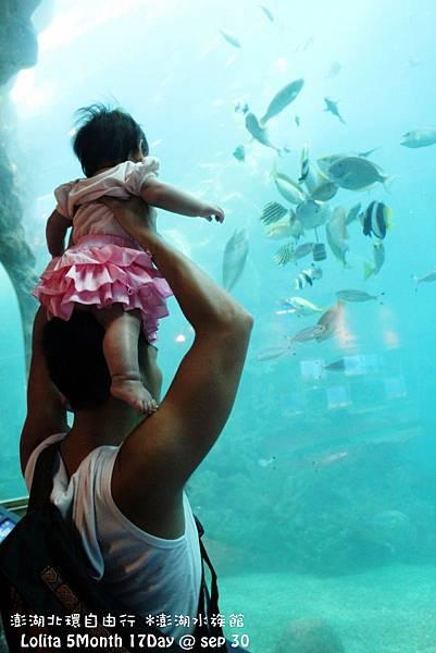 2012 9 30 澎湖水族館 (116)