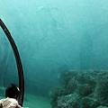 2012 9 30 澎湖水族館 (131)