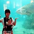 2012 9 30 澎湖水族館 (132)