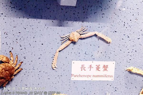 竹灣螃蟹館 (18)