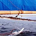 長灘島第一站 夕陽風帆 (98)