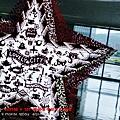 2013 3 2 易斯達航空 (85)