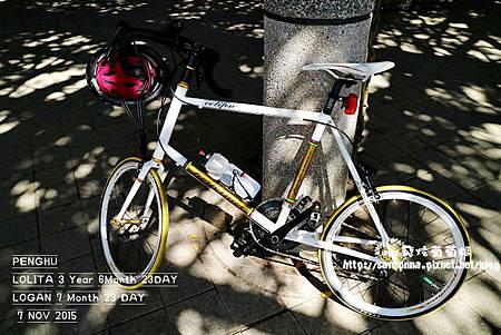 單車遊澎湖 20151107 (12).JPG