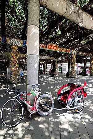 單車遊澎湖 20151107 (15).JPG
