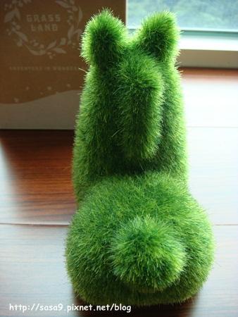 人造草-4