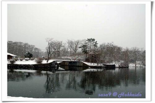大沼公園1