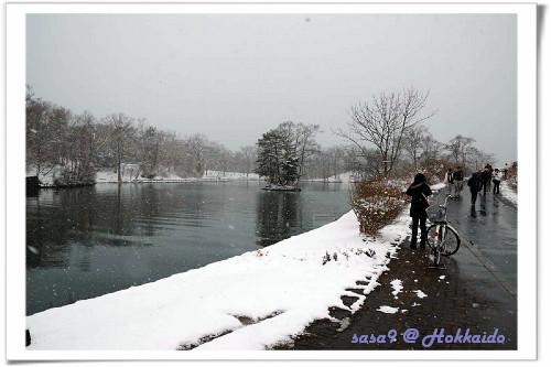 可以騎腳踏車逛大沼公園