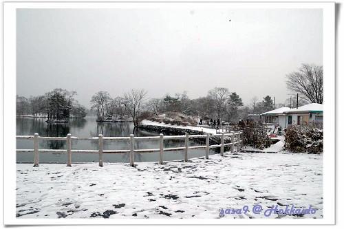 大沼公園2