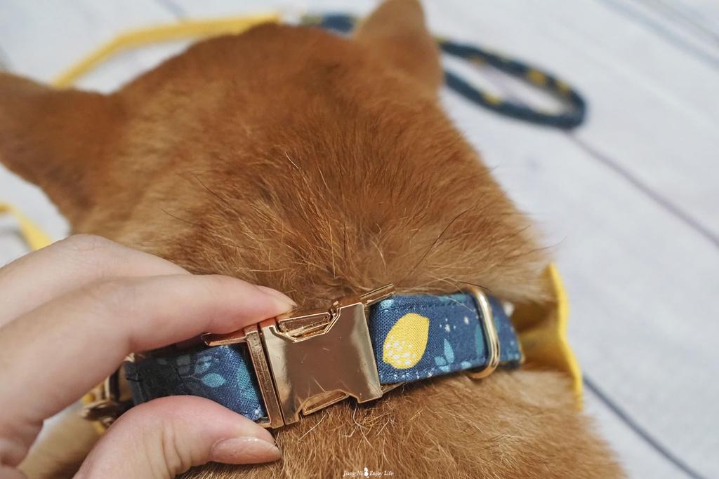 美好毛日寵物牽繩pawsholic爪迷狗狗領結項圈10.jpg