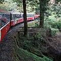森林小火車