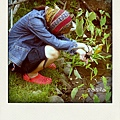 花俏的農婦