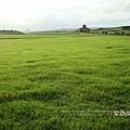 好美的大草原